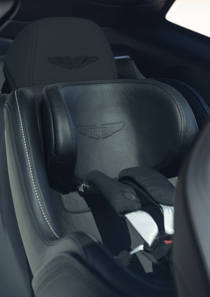 Maxi-Cosi Pebble Plus Special Edition Baby Seat